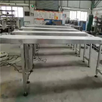Belt horizontal conveyor