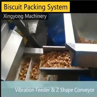 Biscuit packing system