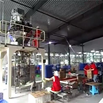 Small bag into big bag packing system