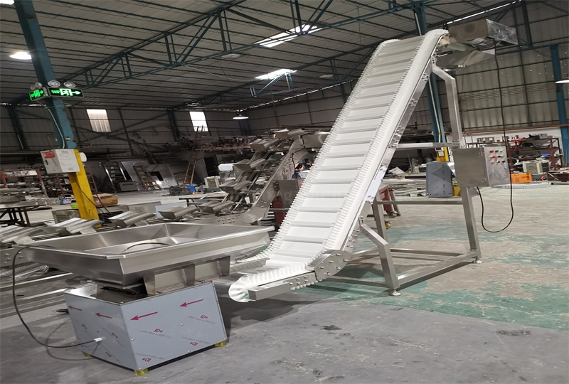 Skirt Chain Plate Inclined Conveyor